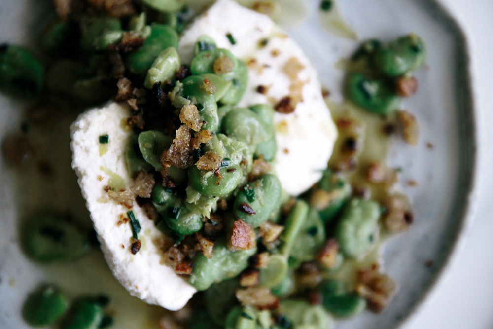 Fresh Ricotta with Broad Beans & Rye Sourdough Breadcrumbs  |  Gather & Feast