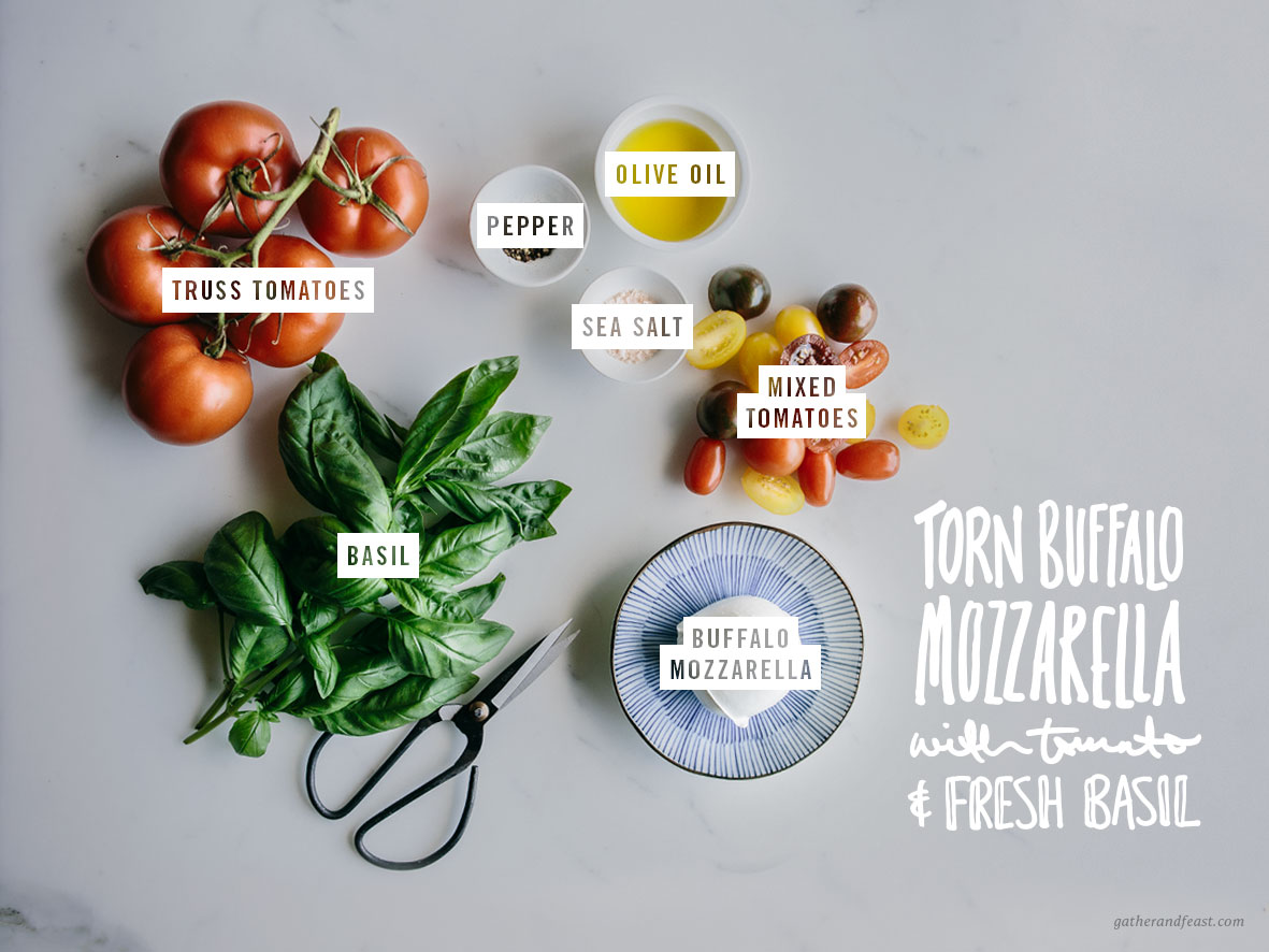 Torn Buffalo Mozzarella with Tomato & Fresh Basil  |  Gather & Feast
